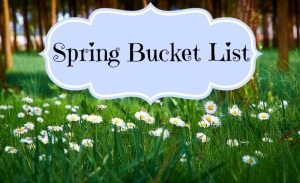 spring bucket